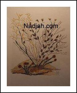 Nadjah Art New 06