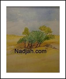 Nadjah Art New 09