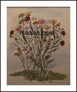 Nadjah Art New 11