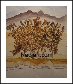 Nadjah Art New 17