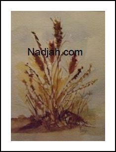 Nadjah Art New 22